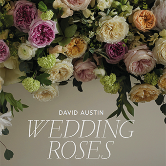 David Austin wedding roses book